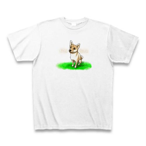 美人すぎる柴犬ちはるTシャツ
