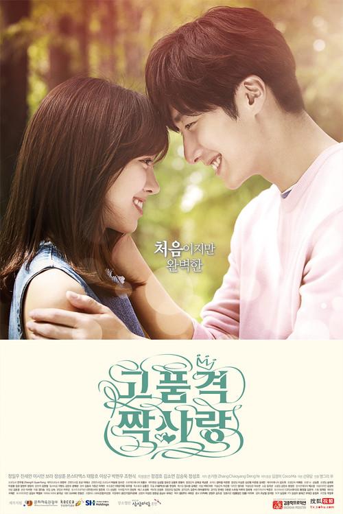 韓国ドラマ【高品格の片思い】Blu-ray版 全20話