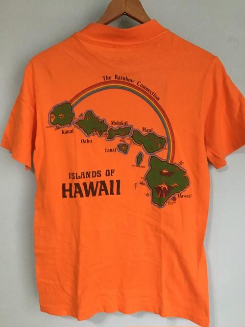 US ビンテージ Hawaii ハワイ プリント Tシャツ Hanes beefy 80s 90s OLD
