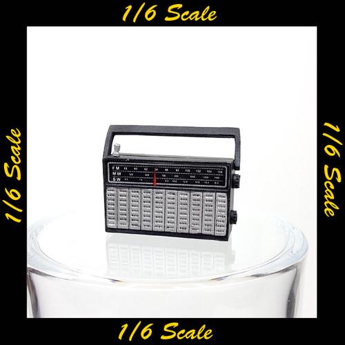 【01645】 1/6 ACE ラジオ