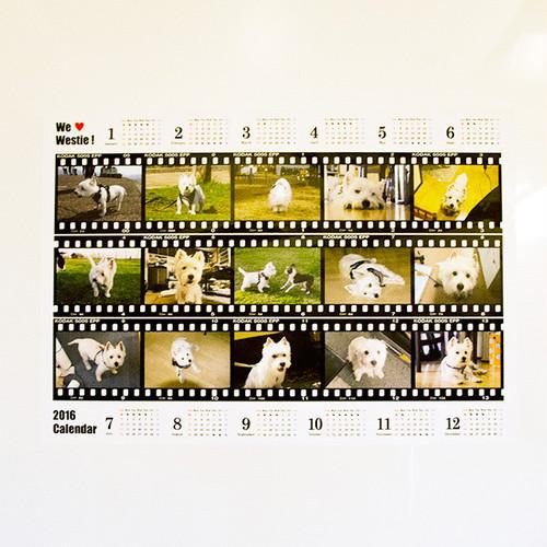 お風呂カレンダー1  組み合わせ自由 2枚セット