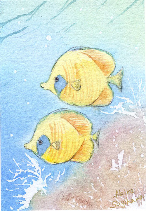 【ミニ原画】海の仲間たち⑯