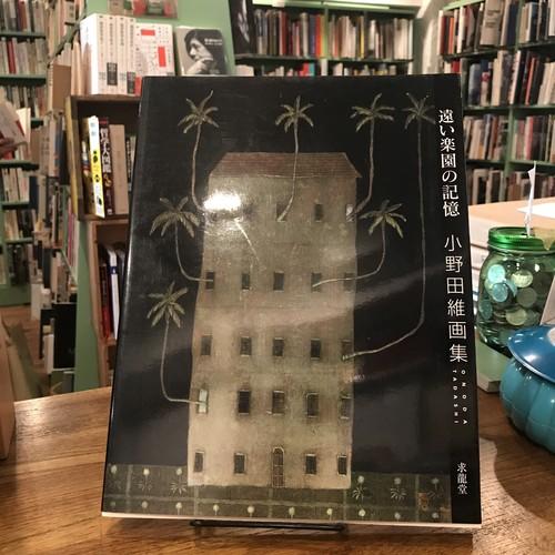 遠い楽園の記憶 小野田維画集
