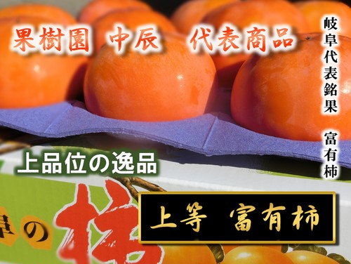 上等 富有柿 中玉 1段 12玉