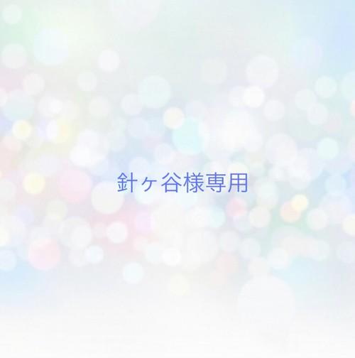 【専用】針ヶ谷様専用