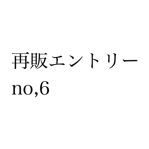 再販エントリー no,6