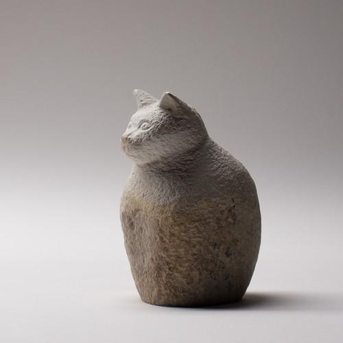 猫5 Cat5