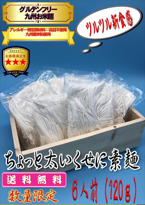 送料無料☆彡【数量限定】グルテンフリー お米麺 『ちょっと太いくせに素麺』8食120g