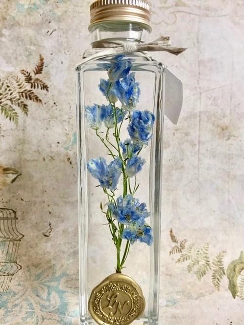 【in the bottle】delphinium