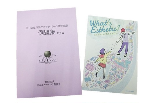 例題集Vol.3&What's Esthetic