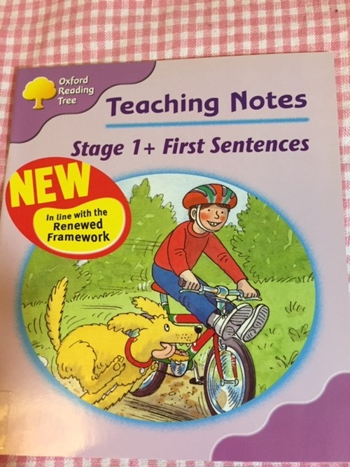 ORT Teaching Notes set(Stage1+ First Sentences)