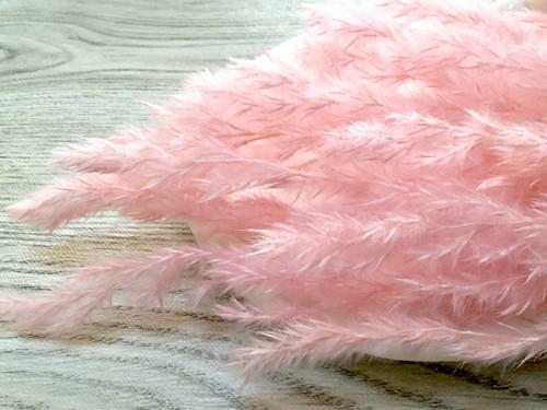 希少素材 エリアンサス ピンク 3g ドライフラワー  スワッグ、キャンドル
