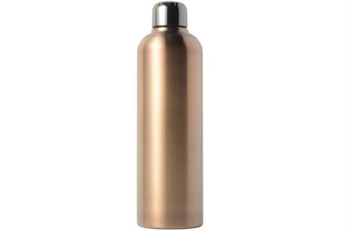 銀未来 水筒 GKB-1110