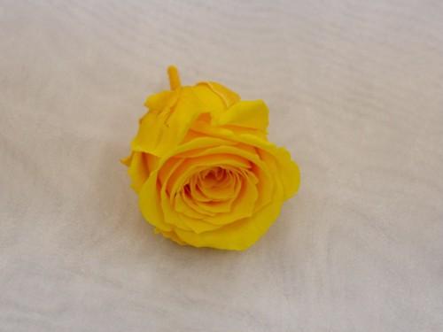 【送料無料】花のhiro's japan プリザーブドフラワー 薔薇 1輪 単品 イエロー 522