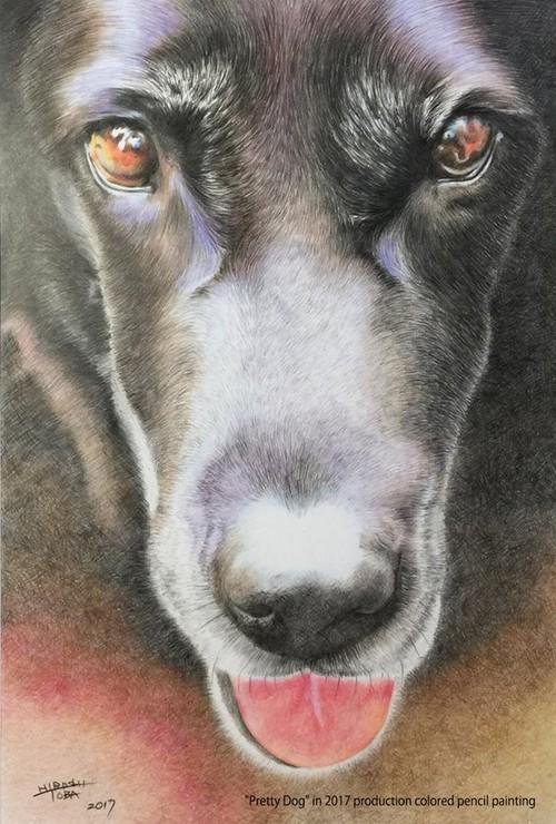 ポストカード -Dog-