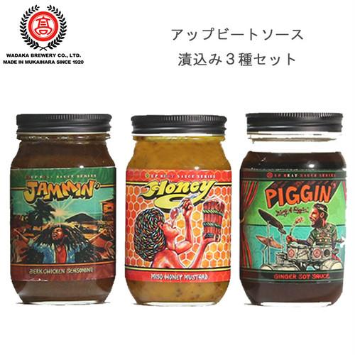アップビートソース 漬込み 3種セット 新感覚 調味料 和高醸造 バーベキュー BBQ アウトドア 用品 キャンプ グッズ