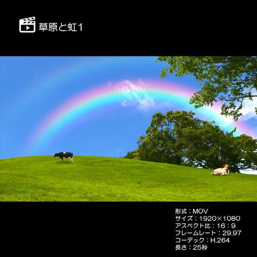 草原と虹1