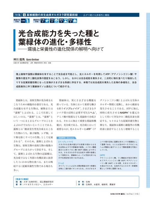 2016年3月号/特集/神川 龍馬 氏