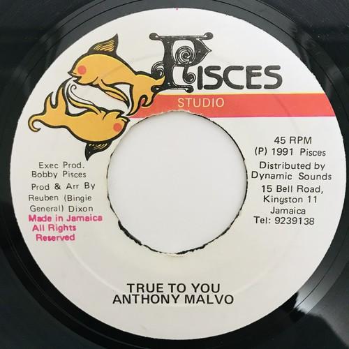 Anthony Malvo- True To You【7-11017】