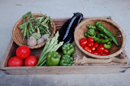 【京都市内限定!】あらい農園野菜BOX (火曜日配達) 配達料200円込