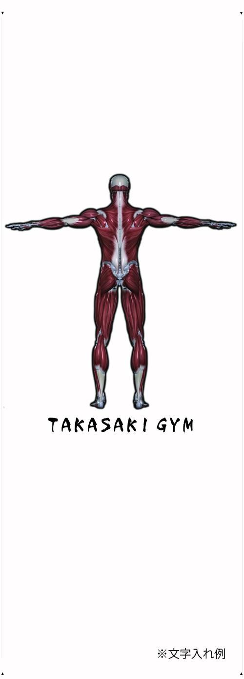 人体筋肉マップ壁紙  NO.2-背面    リノベーションにも新規開業時にもクロス施工にぴったり!