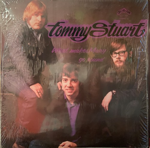 【LP】TOMMY STUWART/What Makes Mary Go Round