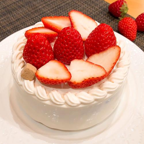 いちごショートケーキ(わんちゃん用)【Lサイズ】