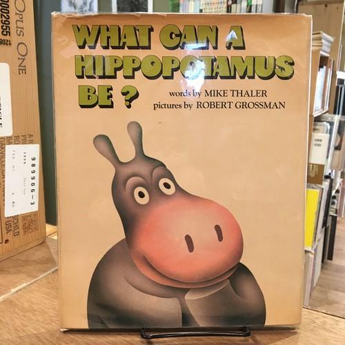 WHAT CAN A HIPPOPOTAMUS BE ? / マイク・セイラー(Mike Thaler), ロバート・グロスマン(Robert Grossman)