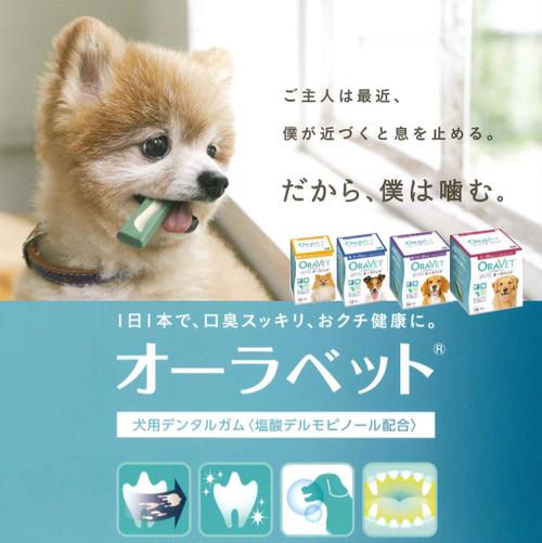【送料無料】オーラベット Lサイズ 14個(14日分)入り 1箱(20kg〜)