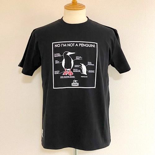 I'm not Penguin T-shirts Black