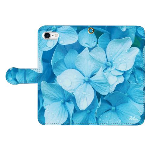 Hydrangea Iceblue