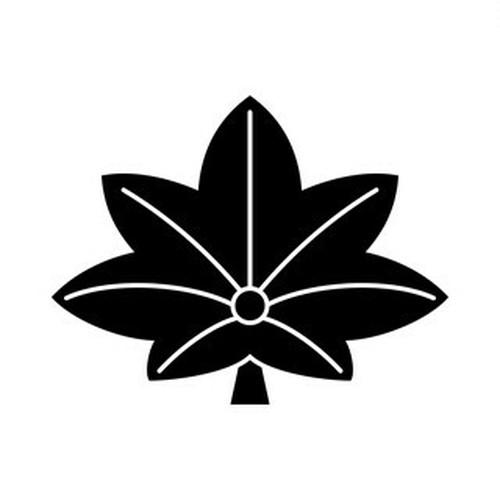 菱楓 aiデータ
