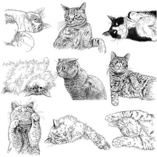 CUSTOM PORTRAITS OF UPPER BODY / ILLlUST OF CATS, DOGS AND ANIMALS...