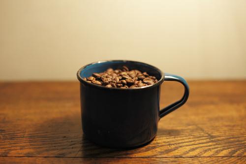 ●送料無料● コーヒー豆 ケニア・ニエリヒル 中深煎り 100g