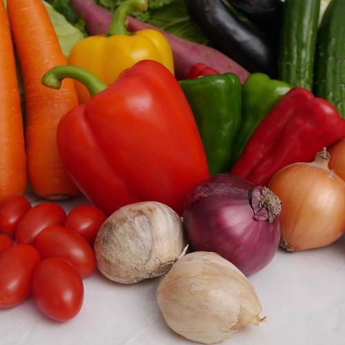 仙台旬の野菜セット(定期便)*一部地域送料無料