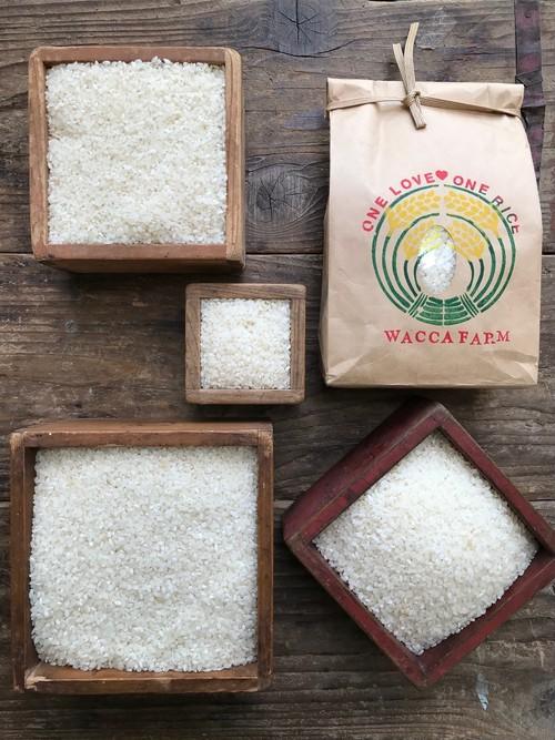 自然栽培米20kg「ひのひかり・きぬむすめ」(玄米/5分/7分/白米)※2020年新米発送は10月中旬~下旬より