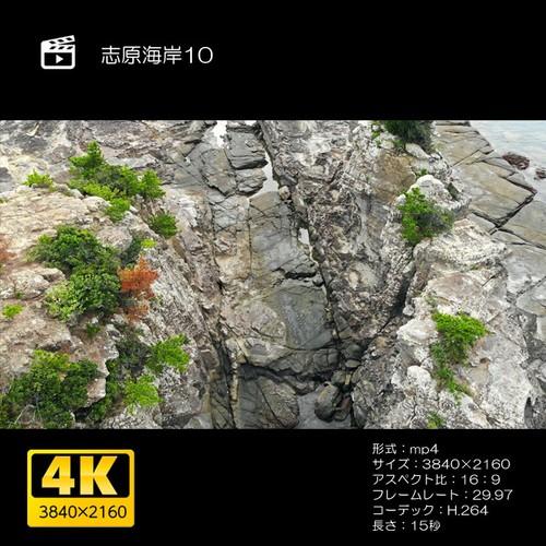 志原海岸10
