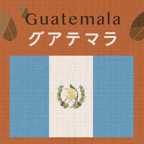 グアテマラ アンティグア・アゾテア農園(大袋400g)