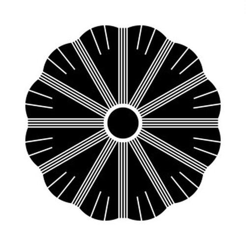 炭の切り口 高解像度画像セット