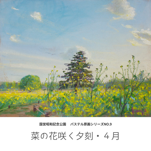 NO.9「菜の花咲く夕刻・4月」