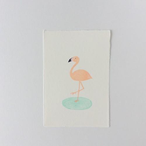 ポストカード フラミンゴ