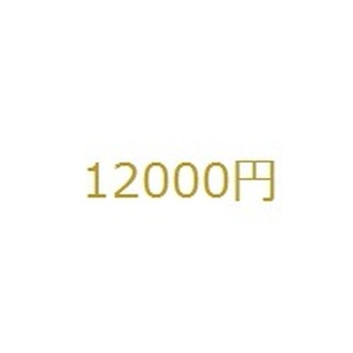 12000円分