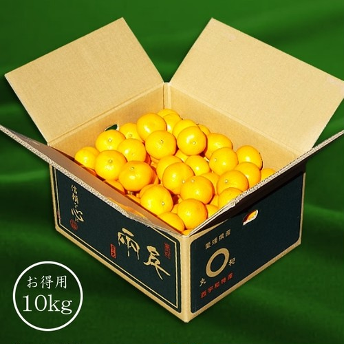 「日の丸みかん 千両」 10kg 優品