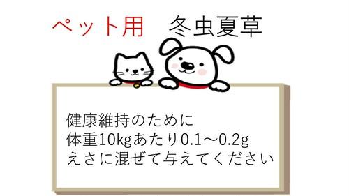 ペット用 冬虫夏草 菌糸体 パウダー10g