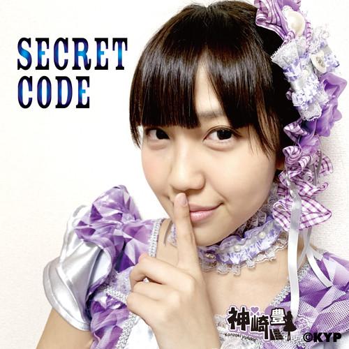 SECRET CODE/神崎豊