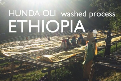 ETHIOPIA 【washed process】 -french- 100g