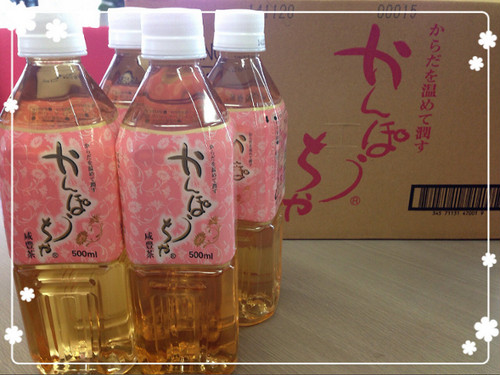 かんぽう茶ペットボトル500ml(24本入1ケース)
