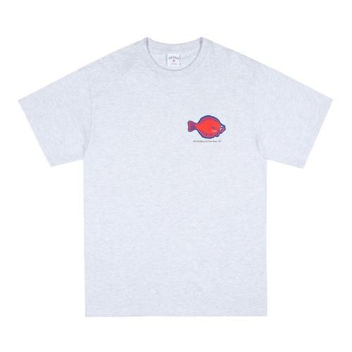 Flounder Shop Tee(Ash)