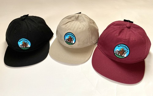 THE ROOTS EVOLVED CAP