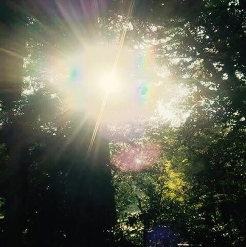 豊穣の黄金光線エネルギー